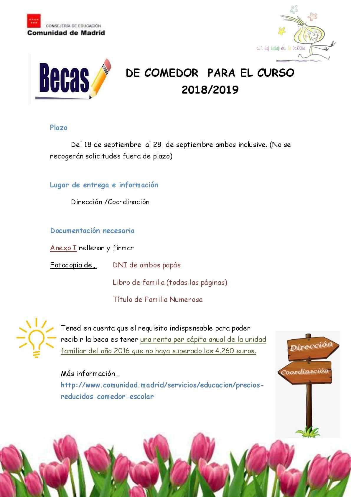 Información sobre becas de comedor